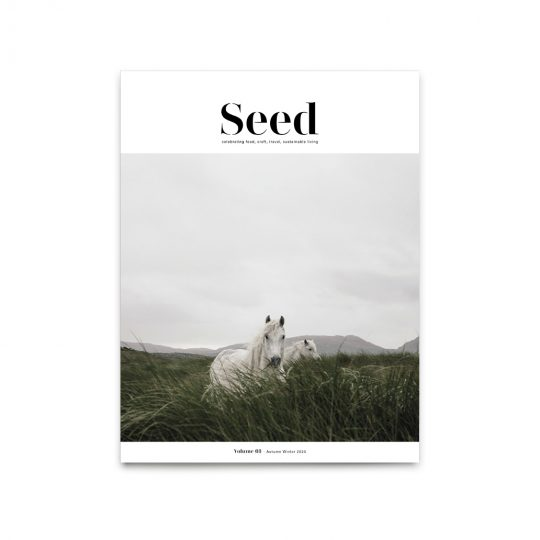 seed-magazine-issue-3